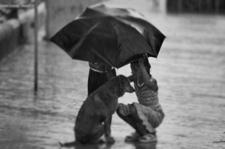 Empatia – wiele ciekawych aspektów empatii